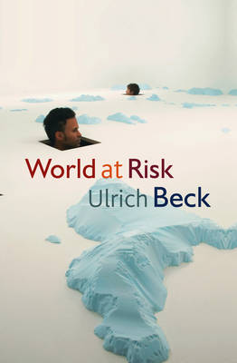 World at Risk book