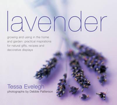 Lavender by Tessa Evelegh