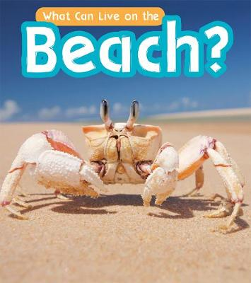 What Can Live at the Beach? by John-Paul Wilkins