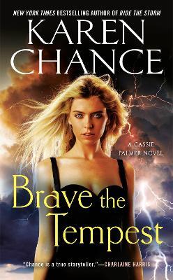 Brave The Tempest book