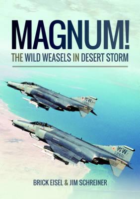 Magnum! The Wild Weasels in Desert Storm book