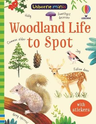 Woodland Life to Spot by Kate Nolan