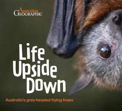 Life Upside Down: Australia'S Grey-Headed Flying-Foxes by Doug Gimesy and Heather Kiley