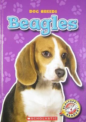 Beagles by Sara Green