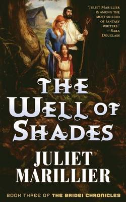 Well of Shades book