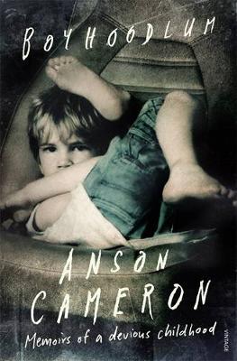 Boyhoodlum book