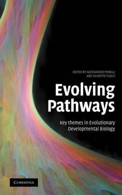 Evolving Pathways book