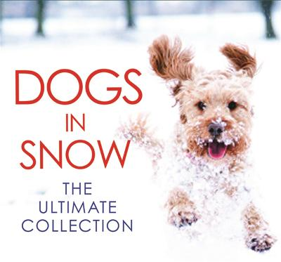 Dogs in Snow - the Ultimate Collection by