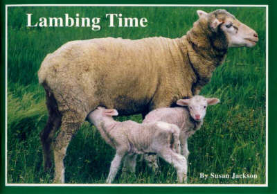 Lambing Time by Susan Jackson