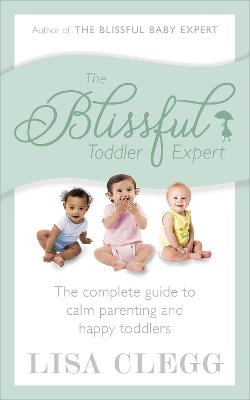 Blissful Toddler Expert book