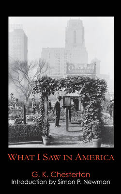 What I Saw in America book