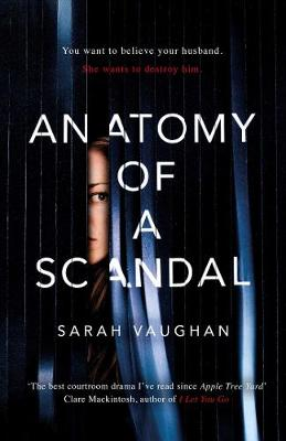 Anatomy of a Scandal book