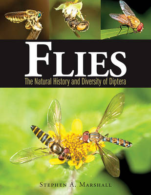 Flies by Stephen A. Marshall