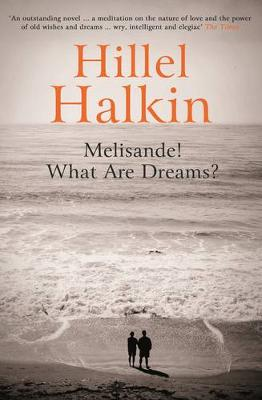 Melisande! What are Dreams? by Hillel Halkin