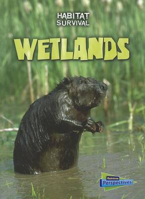 Wetlands by Buffy Silverman