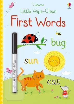 Little Wipe-Clean First Words by Felicity Brooks
