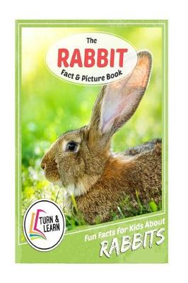 The Rabbit Fact and Picture Book by Gina McIntyre
