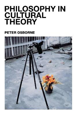 Philosophy in Cultural Theory by Peter Osborne
