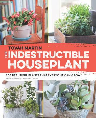 Indestructible Houseplant by Tovah Martin