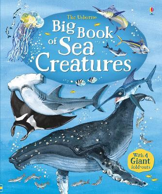 Big Book of Big Sea Creatures book