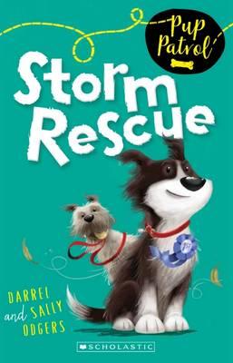 Storm Rescue book