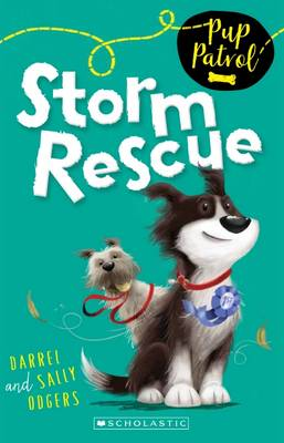 Storm Rescue by Darrel Odgers