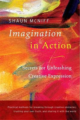Imagination In Action by Shaun McNiff