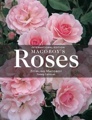 Stirling Macoboys Roses by Stirling Macoboy