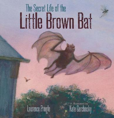 Secret Life of the Little Brown Bat by Laurence Pringle