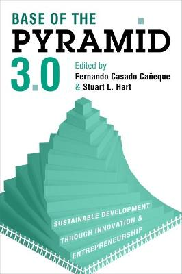 Base of the Pyramid 3.0 book