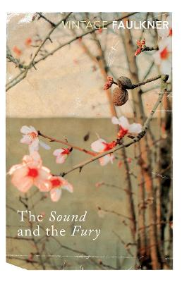 Sound And The Fury by William Faulkner