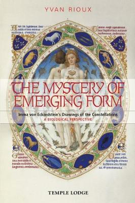 The Mystery of Emerging Form by Yvan Rioux