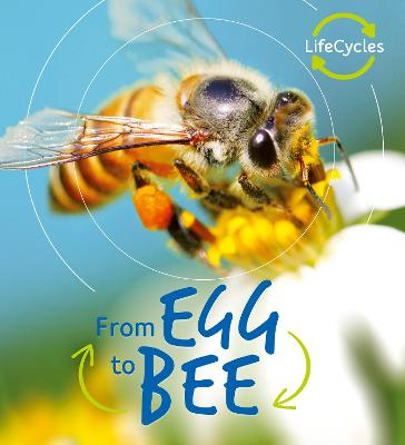 Lifecycles: Egg to Bee by Camilla de la Bedoyere