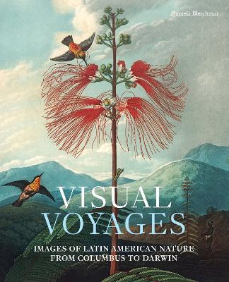 Visual Voyages by Daniela Bleichmar
