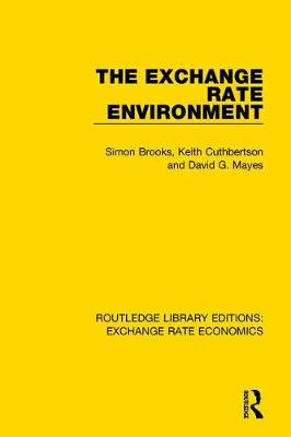 The Exchange Rate Environment book