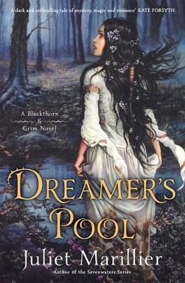 Dreamer's Pool book