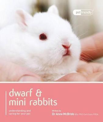 Dwarf Rabbit - Pet Friendly by Anne Mcbride