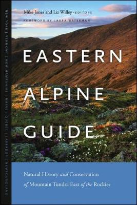 Eastern Alpine Guide by Mike Jones