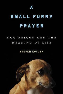 A Small Furry Prayer by Steven Kotler
