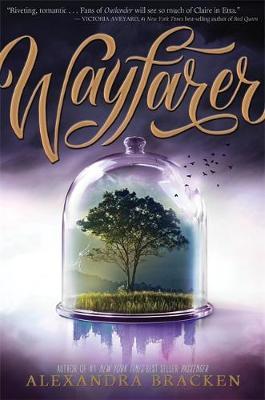 Passenger: Wayfarer book
