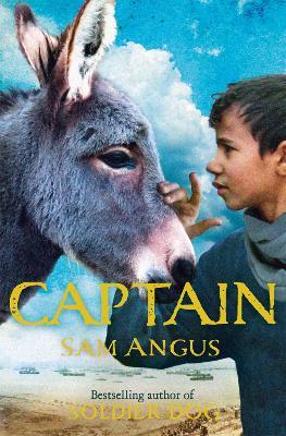 Captain book
