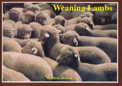 Weaning Lambs by Susan Jackson