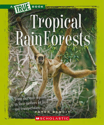 Tropical Rain Forests by Peter Benoit