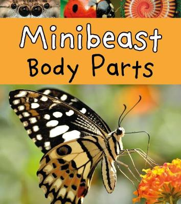 Minibeast Body Parts by Clare Lewis