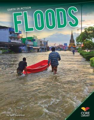 Floods by Lois Sepahban