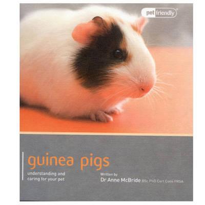 Guinea Pig - Pet Friendly by Anne Mcbride