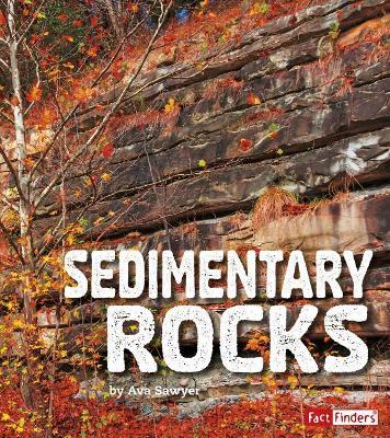 Sedimentary Rocks by Ava Sawyer