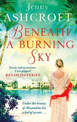 Beneath a Burning Sky book