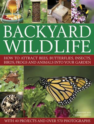 Backyard Wildlife by Christine Lavelle