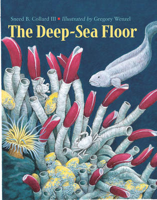 Deep-Sea Floor by Sneed B. Collard III